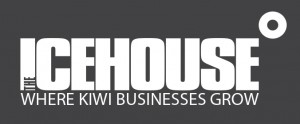 Business Coaching at The Icehouse